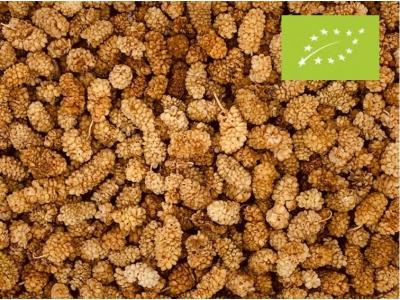 Moerbeibessen wit biologisch (stazak)
