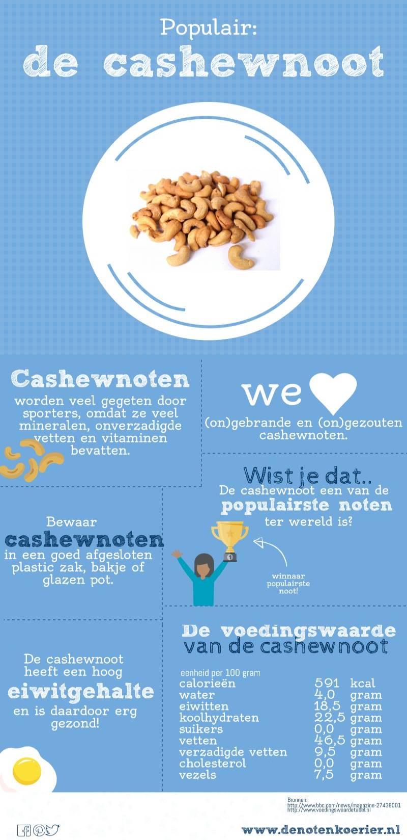 infographic cashewnoten